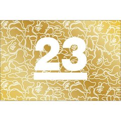 JAQUETA AUTHENTIC BAPE 23 ANNIVERSARY GOLD COLLECTION - comprar online