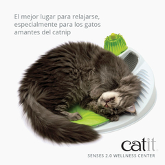 Catit Senses 2.0 Wellness Center - comprar online