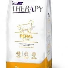 Therapy Renal Perro