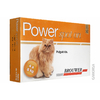 Power spot on – Gato - comprar online