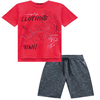 Conjunto Camiseta  e Bermuda Moletinho - Johnny Fox