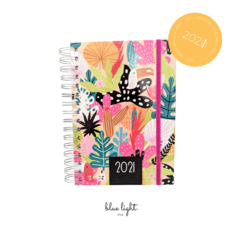 Agenda - Tropical Colors